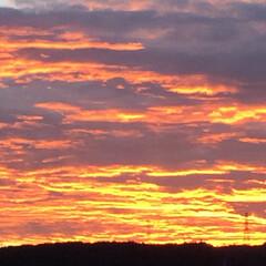 夕焼け/空 今日は朝からお天気も良く、素敵な夕焼けま…