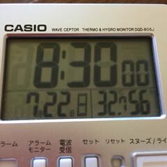 猛暑/訪問者(鳥)/空 今日も、朝から暑い😵☀️ 鳥さんも暑いか…
