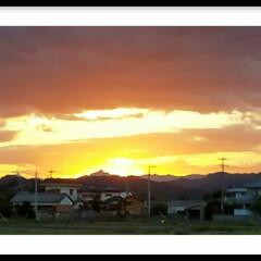 夕焼け/おでかけ/夕陽/眩しい ワンちゃんのお散歩中に眩しい夕焼けに出会…