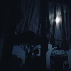 夜空/月明かり/月夜/100均/雑貨/暮らし/... こんばんは😃🌃  今夜早く寝ようと🛌に入…
