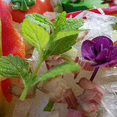 梅雨/おうちごはん/フード/グルメ/サラダ/一品/... きらきらサラダ ドアップ ( ^-^)ノ…