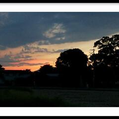 夕焼け/夕陽/グリーン/おでかけ 『夕焼け』