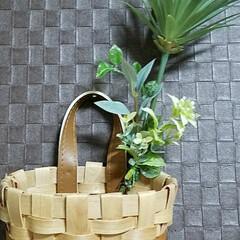 入れ物/アイデア/アイデア雑貨/DIY/ディアウォール/雑貨/... こんな入れ物作りました👍 百均のかごを飾…