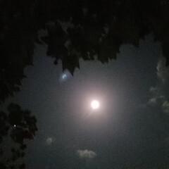 中秋の名月/満月/月夜/空 遅れましたが…😁💦  昨日は、とっても綺…