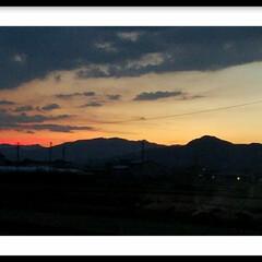 夕焼け ワンちゃんのお散歩中、コントラストが素敵…