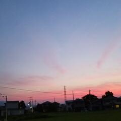 紅白の水引/紅白/水引/景色/夕焼け/夕陽 昨日の🌅と夕焼け🎵 とっても綺麗でしたよ…(2枚目)
