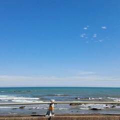 夏の思い出/そら/海 夏の思い出 海✨