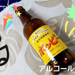 ビール/アルコール/ホッピー/お酒/家飲み 🍺私にピッタリ~( *´艸`)  見~つ…