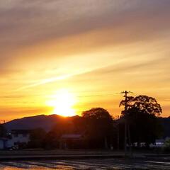 そら/SORAMADO/イチジク/モッコウバラ/癒し系/癒し/... ✨綺麗な夕陽が、📸出来ました🌄(*´∇`…(1枚目)