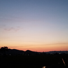 夕陽/夕空/夕焼け/ガーデン/紫陽花/庭/... お散歩🐩🚶♀️ 今日も素敵な夕焼けでし…(4枚目)