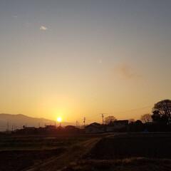夕焼け/夕陽/夕日 大きな🌄夕陽でした✨(´ー`).。*・゚…