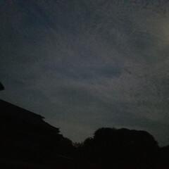 夜🌙✨/風景/お散歩/月夜 今夜の月夜です✨  今日は遅めのお散歩 …
