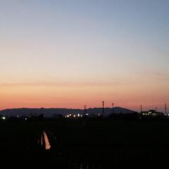 夕陽/夕空/夕焼け/ガーデン/紫陽花/庭/... お散歩🐩🚶♀️ 今日も素敵な夕焼けでし…(3枚目)