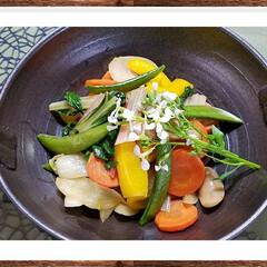家庭菜園/グリーン/おうちごはん/グルメ/炒め物/オリーブoil/...   『スイスチャードの炒め物』 ☆今日の…