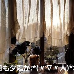 夕陽/景色/夕暮れ風景/LIMIAFESTA/100均/住まい/... ガラス越しから夕陽が…:*(〃∇〃人)*…