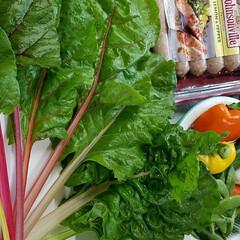 家庭菜園/グリーン/おうちごはん/キッチン/フード/グルメ/... 🌿本日の収穫 他 献立材料🍴😋