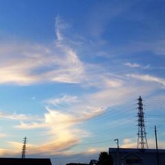 みるくと夕陽/散歩/空と犬/sky/青空/SORAMADO/... 青空  良いよね~   (´ー`).。*…(2枚目)
