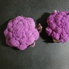 紫カリフラワー/カリフラワー/野菜/変わった色野菜 自宅にあるブルー係を集めて見ました💙💜