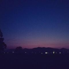 夜空/ブルー/令和の一枚/フォロー大歓迎/LIMIAペット同好会/わんこ同好会/... いつもの夕焼けスポット❣️🐩🚶♀️ 🌃…