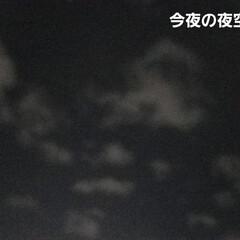 自然/テントウムシ/月夜/夜空/月と星 今夜の夜空🌃  月夜で綺麗✨     く…