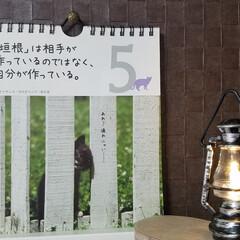 カレンダー/家庭菜園/🍘/れもん/パプリカ/金柑/... 🐈にゃんの📆カレンダー‼️  今日の言葉…