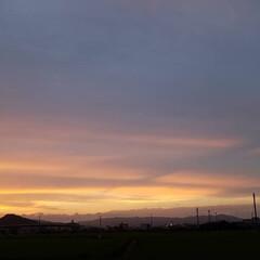ワンコのいる暮らし/お散歩/夕陽/イマソラ/夕空/夕焼け/... 🌄🐩🚶♀️綺麗な夕焼け、撮れました~(…