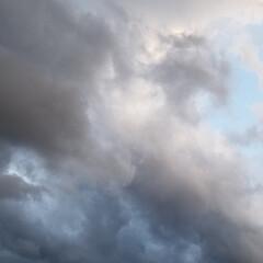わんこのいる暮らし/雪雲/夕陽/風景/散歩道/菜の花/... 🐩🚶♀️お散歩の途中、急に雲行きが悪く…(2枚目)