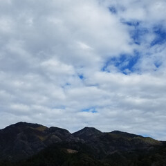田舎/自然/景色/田舎の風景/サンド/百均/... 今日の📆ねこちゃんカレンダー🐈  今日は…(6枚目)