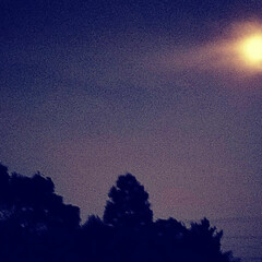 夜更け/バルコニー・ベランダ/月夜/住まい/建築 月夜 夜更けにバルコニーから見上げて📷✨…