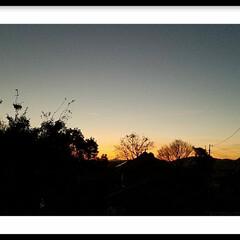 オレンジ色/夕陽/夕焼け/グリーン 『夕陽』