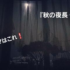 夜空/秋の夜長/暮らし/フォロー大歓迎/次のコンテストはコレだ! 次のテーマは、『秋の夜長』‼️ 秋の夜長…(1枚目)