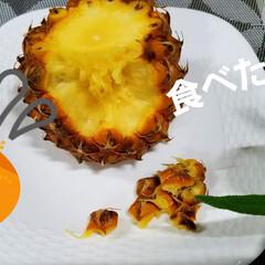 フルーツ/スナックパイン/パイナップル/おうちごはん/暮らし/デザート/... 私の大好きなスナップ🍍😆💕 これ手でちぎ…