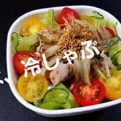 昼ごはん/冷しゃぶ/お弁当/夏対策/スタミナご飯/スタミナ丼/... お昼の🍱は、冷しゃぶにしました。一応ヘル…