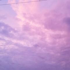 みるくと夕陽/散歩/空と犬/sky/青空/SORAMADO/... 青空  良いよね~   (´ー`).。*…(3枚目)