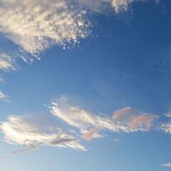 空/ピンクの雲/あおぞら/雲/おでかけ 👀PINKの雲見っけ🎵