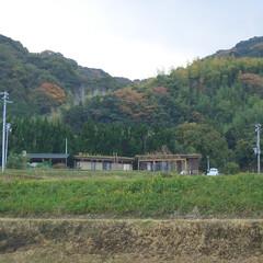 草屋根/焼杉板/版築/土壁/片流れ屋根/木造平屋/... 淡路島の内陸部に建っている家と陶芸工房。…