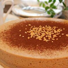 料理/手作りケーキ/手作り/ケーキ/ムースケーキ コーヒームースケーキ