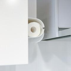 キッチンペーパーホルダー 0342(ラップ、ペーパータオルホルダー)を使ったクチコミ「キッチンペーパーは出しておいた方が使いや…」