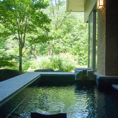 水上/温泉旅行/旅行/旅/温泉/旅館/... 水上にある温泉旅館「別邸 仙寿庵」さんの…