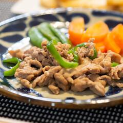 おうちごはん部/料理/献立/夕食 ある日の晩ごはんのメインは塩麹豚肉の醤油…