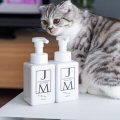 猫/ハンドソープ/ジェームズマーティン/猫と暮らす 何でも新しいものがあるとチェックせずには…