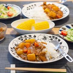 パラティッシ オーバルプレート 25cm ブラック | アラビア(皿)を使ったクチコミ「夏といえばカレーライス!…冬でも同じ頻度…」(1枚目)