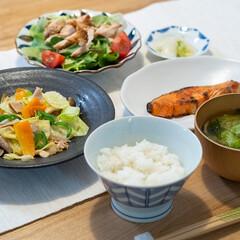 おうちごはん部/料理/献立/夕食 ある日の晩ごはん。 ・紅鮭の塩焼き ・野…(1枚目)