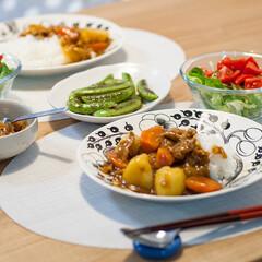 わたしの手作り/おうちごはん部/料理/献立/カレーライス 本日の晩ごはん。 簡単料理の代表、カレー…(1枚目)