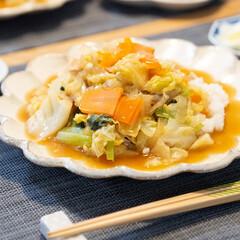 光陽陶器 大皿 24.5cm リンカ 24プレート 白練 40801(皿)を使ったクチコミ「ある日のメインは中華丼。白菜ではなくキャ…」