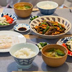 おうちごはん部/料理/献立/夕食 ある日の晩ごはん ・麻婆茄子 ・海老蒸し…