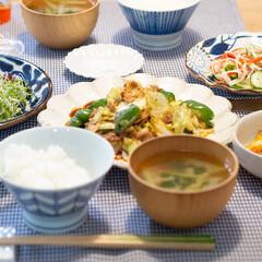 カネコ小兵製陶所 リンカ 24cmプレート(皿)を使ったクチコミ「ある日の晩ごはん ・回鍋肉 ・カツオのタ…」