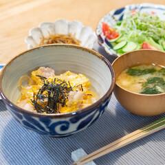 カネコ小兵製陶所 リンカ 16cmボウル(その他食器、カトラリー)を使ったクチコミ「ある日の晩ごはん ・親子丼 ・レタス、き…」(1枚目)