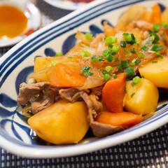 ノベルティ/記念品向け波佐見焼 モダンブルー カレー鉢ペア 周年記念/プレゼントに!(皿)を使ったクチコミ「ある日の晩ごはんのメインは肉じゃが。 わ…」