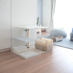 猫/猫との暮らし/猫のいる生活/インテリア/ケージ 愛猫ぐうも生後6ヶ月を過ぎ、ケージを使う…